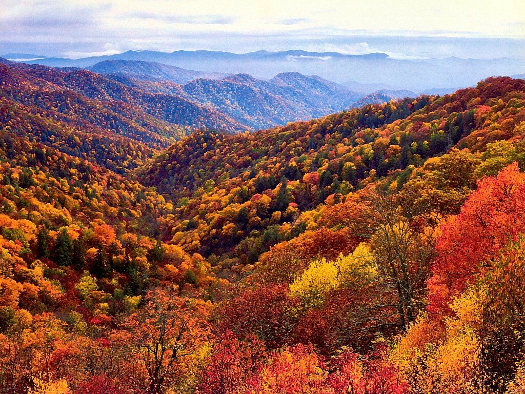 The Top 5 Fall Vacation Spots