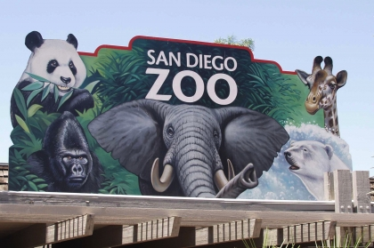 San Diego Zoo!